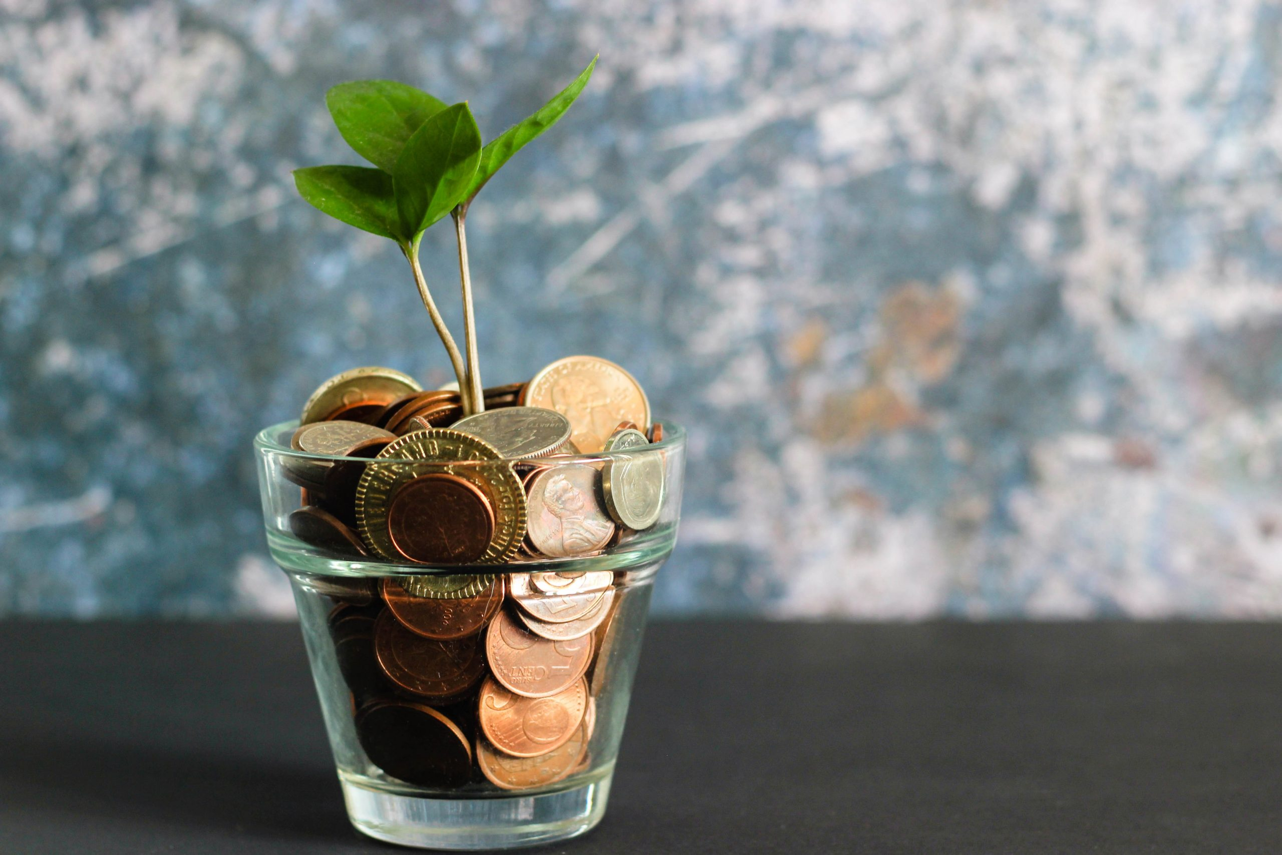 A glass filled with money and a plant growing from it